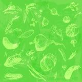 Comida dibujada mano del garabato, verduras Objetos verdes claros, fondo inconsútil de la acuarela verde clara Imágenes de archivo libres de regalías