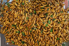 Comida exótica asiática Imagen de archivo libre de regalías