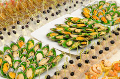 Comida fría de los mariscos Fotografía de archivo