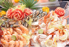 Comida fría de los mariscos Fotos de archivo