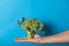 Comida fresca de la dieta del bróculi, verdura antioxidante fotos de archivo libres de regalías