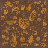 Comida, frutas y bayas dibujadas mano del garabato Objetos anaranjados, fondo inconsútil de la acuarela marrón Foto de archivo