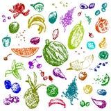 Comida, frutas y bayas dibujadas mano del garabato Objetos coloreados, fondo inconsútil blanco Imagenes de archivo