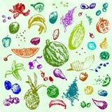 Comida, frutas y bayas dibujadas mano del garabato Objetos coloreados, fondo inconsútil de la acuarela verde EPS 10 Foto de archivo libre de regalías