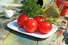 Comida, hierbas, ajo y tomates sanos Imagen de archivo libre de regalías