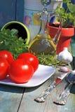 Comida, hierbas y tomates sanos Imágenes de archivo libres de regalías