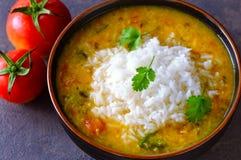 Comida homecooked diaria dal del indio y arroz imagen de archivo libre de regalías