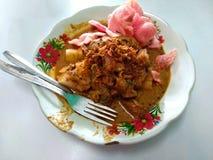 Comida indonesia sabrosa - lontong asiático de la comida imagenes de archivo