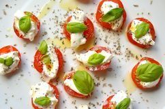 Comida italiana: ensalada caprese en una placa blanca Foto de archivo libre de regalías