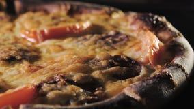 Comida italiana típica de la pizza de alta calidad con el queso de la mozzarella y la salsa de tomate fresca recién cosechados Co metrajes