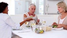 Comida madura de la porción de la mujer a sus amigos almacen de metraje de vídeo