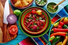 Comida mexicana de Cochinita Pibil con la cebolla roja Imagen de archivo libre de regalías