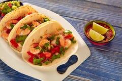 Comida mexicana de los tacos del camarón de Camaron en azul fotografía de archivo