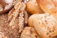Comida natural cocida fresca sabrosa del baguette del bollo del pan imagenes de archivo