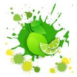 Comida natural de Logo Watercolor Splash Design Fresh de la fruta de la cal Imagenes de archivo