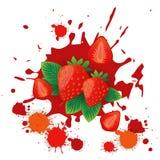 Comida natural de Logo Watercolor Splash Design Fresh de la fruta de la fresa Fotos de archivo