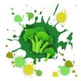 Comida natural vegetal de Logo Watercolor Splash Design Fresh del bróculi Imagenes de archivo