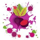 Comida natural vegetal de Logo Watercolor Splash Design Fresh de la remolacha Imagen de archivo