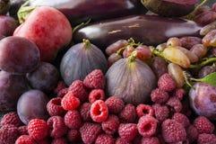 Comida púrpura Fondo de las bayas, frutas y verduras Fotografía de archivo
