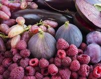 Comida púrpura Fondo de las bayas, frutas y verduras Higos, ciruelos, frambuesas, remolacha, berenjena y uvas frescos Fotografía de archivo