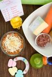 Comida para bebé saudável Imagens de Stock Royalty Free
