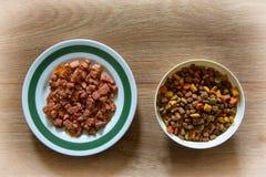 Comida para gatos mojada y seca Imagen de archivo