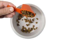 Comida para gatos seca que cae en el cuenco Foto de archivo