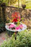 Comida para la mariposa en jardín Fotos de archivo