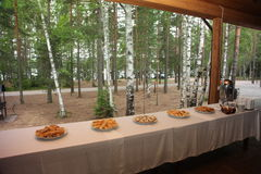Comida para las huéspedes en la terraza de una casa de campo en un fondo de los árboles forestales Imagen de archivo libre de regalías