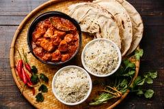 Comida picante de la carne del curry del masala del tikka del pollo Foto de archivo libre de regalías