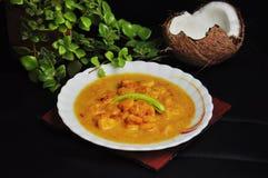 Comida que diseña con curry del malai de la gamba y leche de coco fresca fotos de archivo