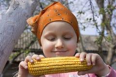 comida sana Imagenes de archivo