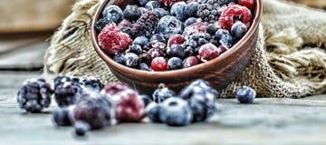 Comida sana congelada de las bayas Imagen de archivo libre de regalías