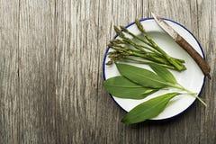 Comida sana de la primavera con el espárrago y el ajo salvaje Fotografía de archivo libre de regalías