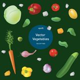 Comida sana del sistema del estilo del realismo del vector Verduras stock de ilustración
