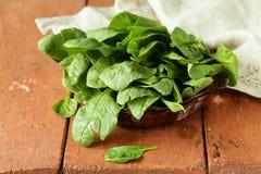 Comida sana orgánica de la espinaca verde fresca Foto de archivo libre de regalías