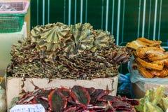Comida secada tailandesa Imagenes de archivo