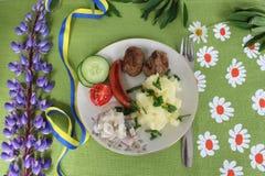Comida sueca del pleno verano fotografía de archivo