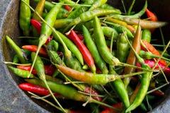 Comida tailandesa del ingrediente de los chiles Imagen de archivo