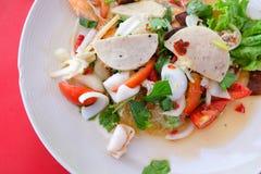 Comida tailandesa, ensalada de los fideos picante Foto de archivo
