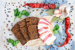 Comida ucraniana Tocino en el pan de centeno Aún vida hermosa Fotos de archivo