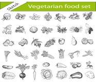 Comida vegetariana stock de ilustración