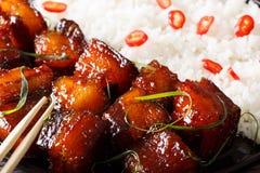 Comida vietnamita: vientre de cerdo caramelizado con macro del arroz horizonte Fotos de archivo