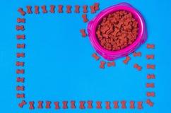 Comida y accesorios de perro en la opinión superior del fondo azul Foto de archivo