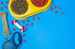 Comida y accesorios de perro en la opinión superior del fondo azul Fotos de archivo