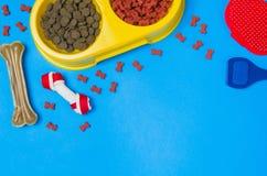 Comida y accesorios de perro en la opinión superior del fondo azul Foto de archivo libre de regalías
