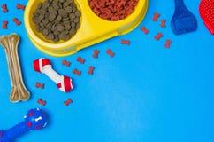 Comida y accesorios de perro en la opinión superior del fondo azul Fotografía de archivo libre de regalías