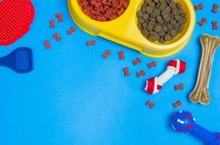 Comida y accesorios de perro en la opinión superior del fondo azul Imágenes de archivo libres de regalías