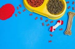 Comida y accesorios de perro en la opinión superior del fondo azul Fotografía de archivo