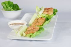 Comida y verdura tailandesas con el fondo blanco imagen de archivo
